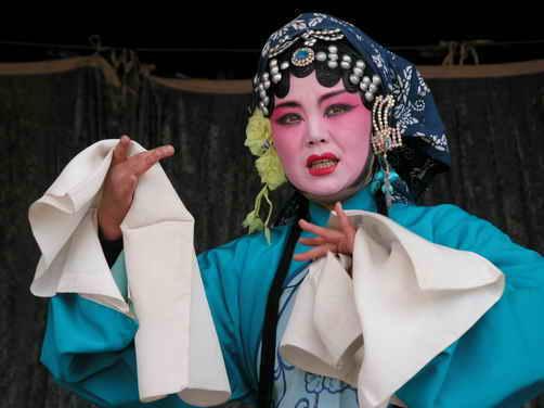 王丹——平剧花园盛开的牡丹