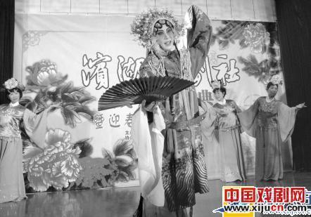 京剧投票人查延平成立滨湖京剧团