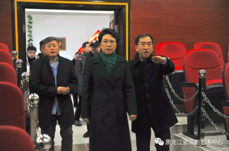 省文化旅游厅厅长张丽娜和省文化旅游厅副厅长俞峰参观了省平剧艺术中心剧院进行考察