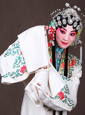 2016年北京京剧《迷人的春天》青年演员大赛京剧《白蛇传》