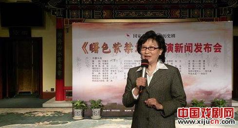 国家京剧剧院和新浪共同发起了国家京剧剧院艺术沙龙